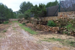 Albardanera3